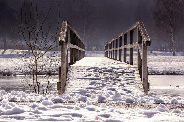 Away, Bridge, Web, Railing, Winter, Nature, Wood