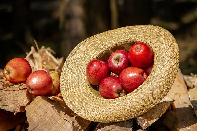 Apple, Fruit, Food, Wood, Nature, Hat, Straw Hat