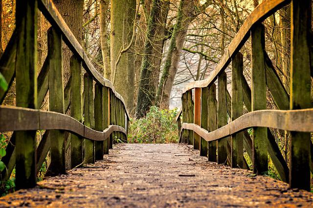 Away, Bridge, Wood, Nature, Railing, Pedestrian Bridge