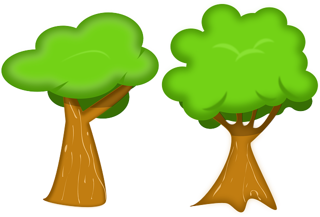 Trees, Forest, Nature, Woods, Flora, Environment