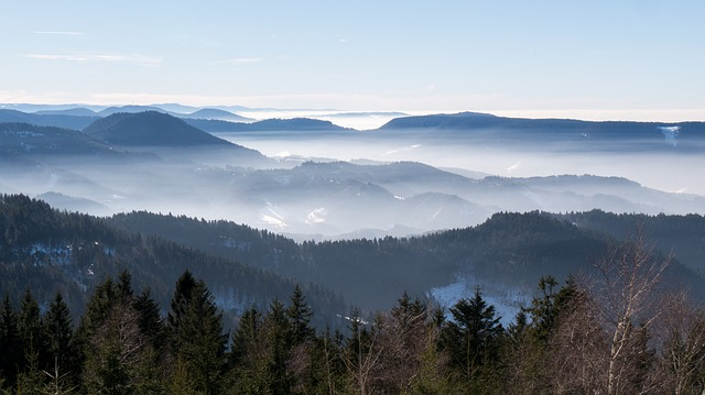 Sea Of Fog, Nebellandschaft, Black Forest, Fog, Vosges