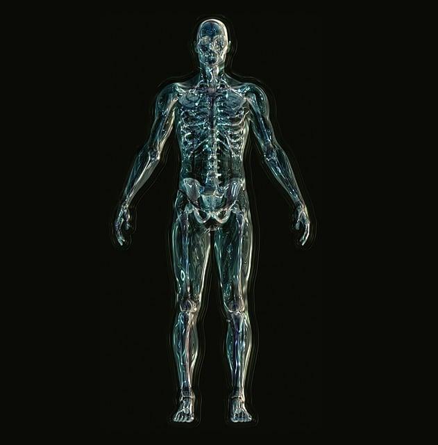 Skeleton, Skull, Death, Eternity, White, Nero, Life