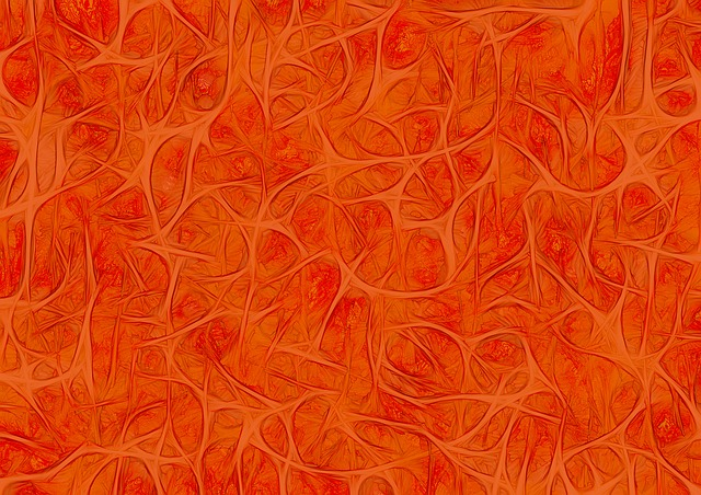 Background, Structure, Pattern, Nerves, Cells