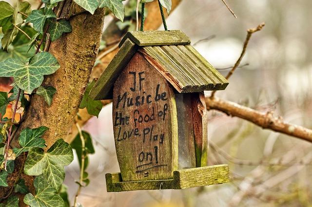 Birdhouse, Nesting Box, Nesting, Bird, Spring, Egg