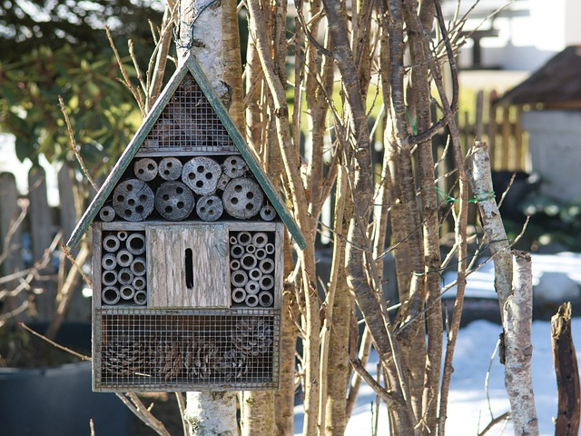 Insect Hotel, Bees, Wasps, Nesting Help, Nature