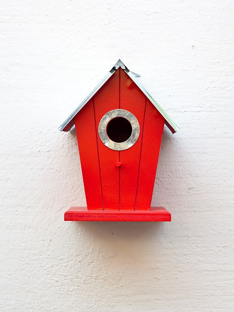 Aviary, Red, Birds, Nesting Place, Bird Feeder