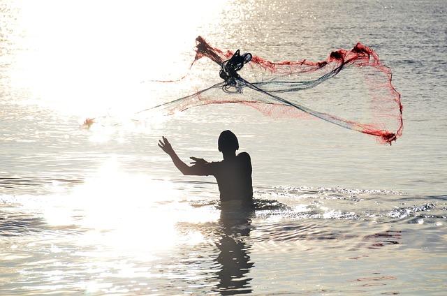 Sri Lanka, Fischer, Network, Throw, Fish, Fishing Net
