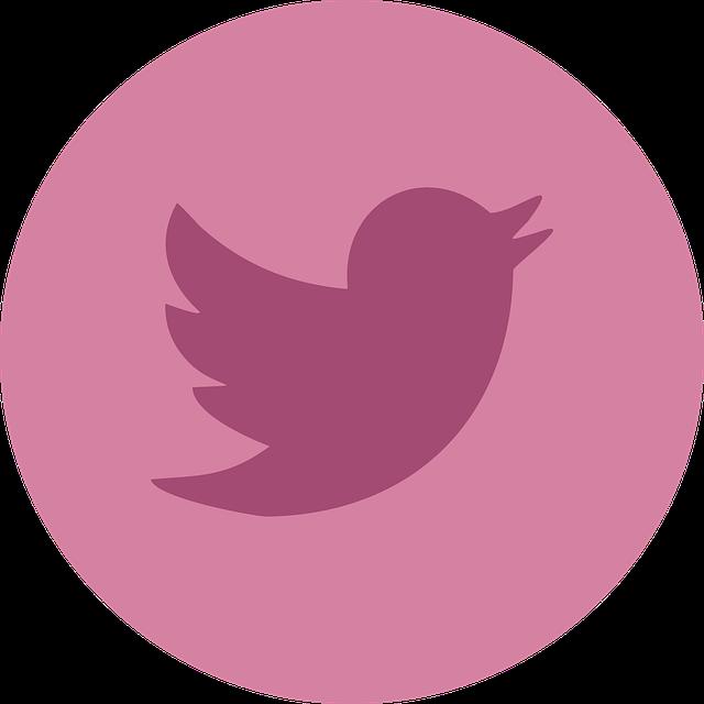 Twitter, Social Media, Social, Networking, Internet