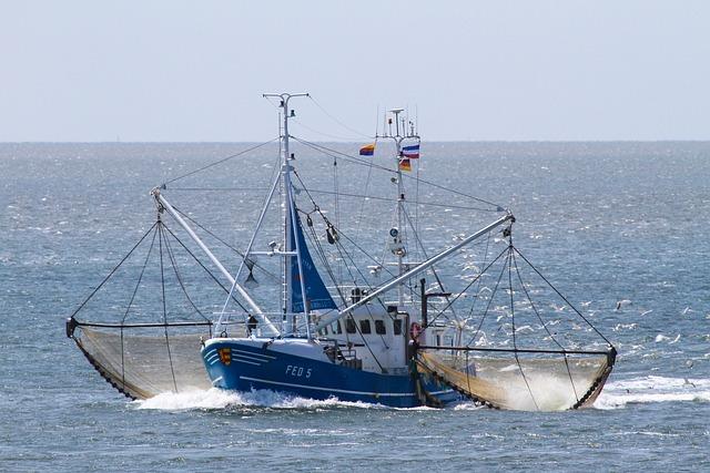 Cutter, Shrimp, Networks, Nordfriesland