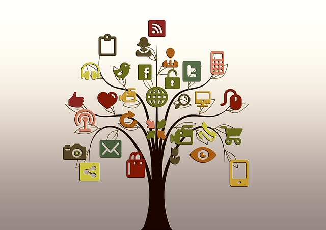 Tree, Structure, Networks, Internet, Network, Social