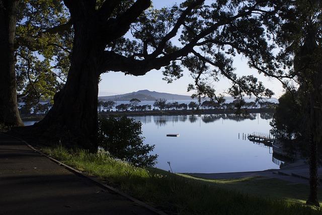 Trees, Park, Estuary, Island, Path, New Zealand, Nature