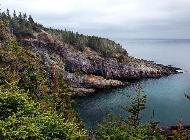 Newfoundland, Avalon, Peninsula, Sea, Nature, Scenic