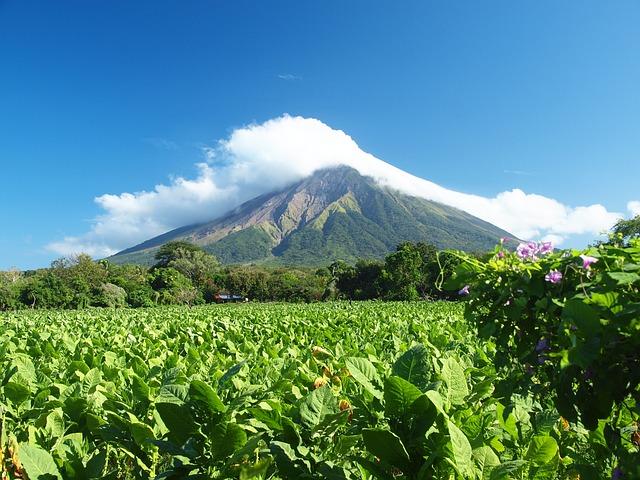 Volcano, Nicaragua, Concepcion, Ometepe, Tobacco