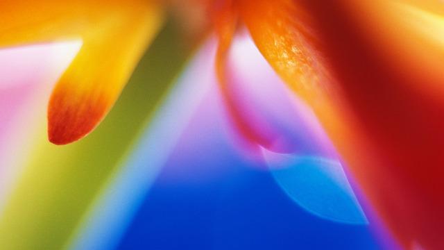 Color, Beautfull, Nice