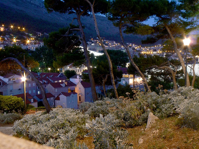 City Park, Night, Lights, Trees, Houese, Houses, Urban