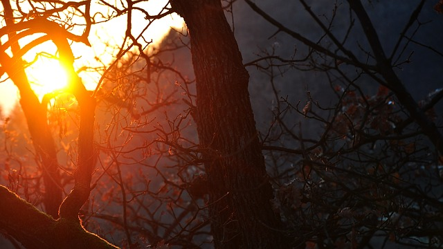 Sunset, Night Lights, Nightfall, Nature