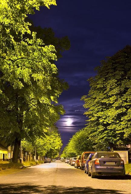 Night Street, Paving, Trees, Full Moon, Summer Night