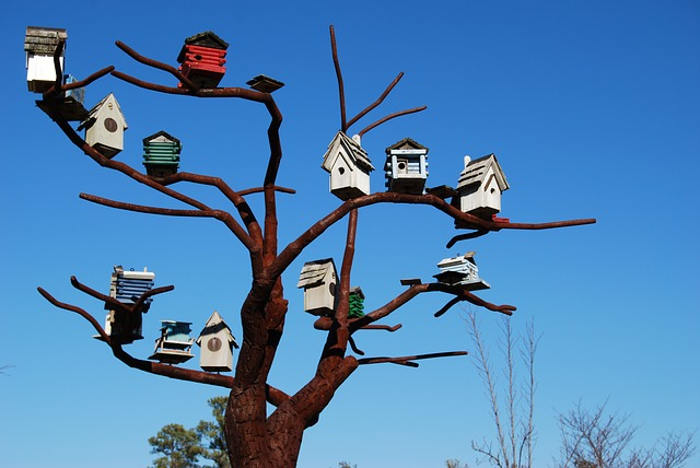 Bird Houses, Steel Tree, Sculpture, North Carolina