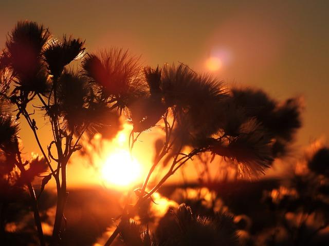 Sunrise, Sunset, North Sea, Netherlands, Background