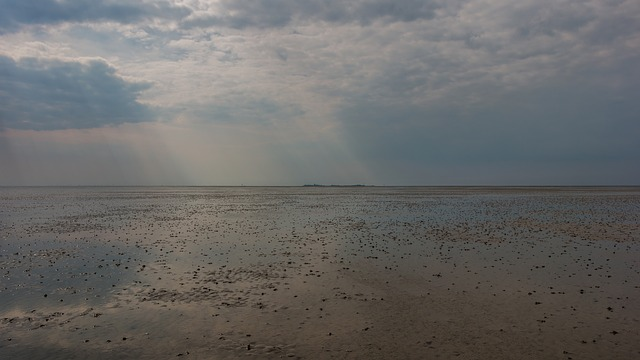 Beach, Watts, Cuxhaven, Duhnen, North Sea, Wadden Sea