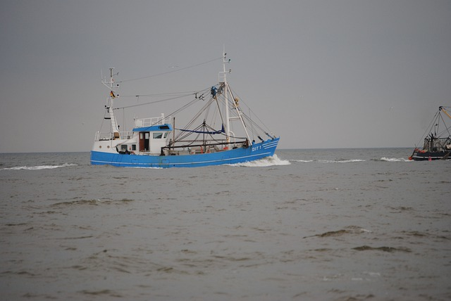 Fishing Vessel, Norderney, Fishing, North Sea