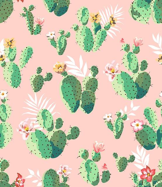 Cacti, Northeast, Romantic
