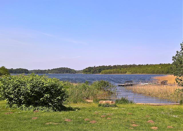 Lake, Schaalsee, Landscape, Northern Germany, Reeds