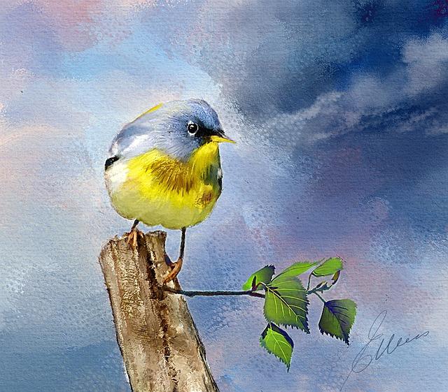 Northern Parula, Bird, Wildlife, Digital Oils, Feathers