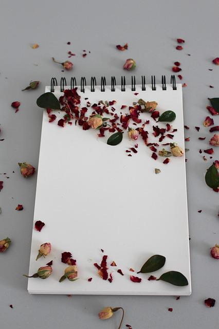 Background, Notebook, Note, Leave, Book, Notes