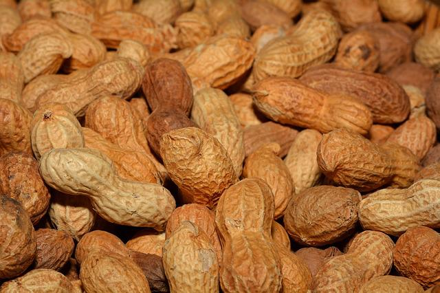 Peanuts, Healthy, Shell, Delicious, Nutrition, Close