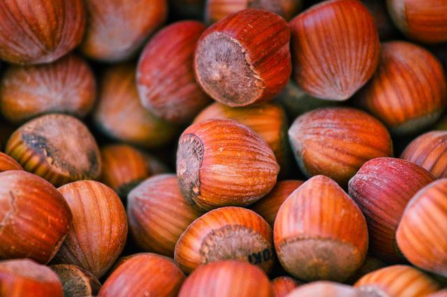 Hazelnuts, Nuts, Food, Brown, Protein, Nutrition