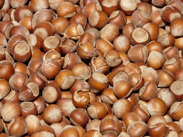 Hazelnuts, Brown, Nuts, Open, Shells, Market, Close