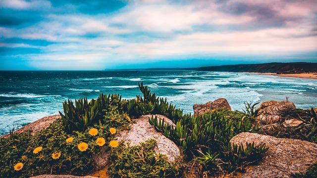 Beach, Coastline, Ocean, Landscape