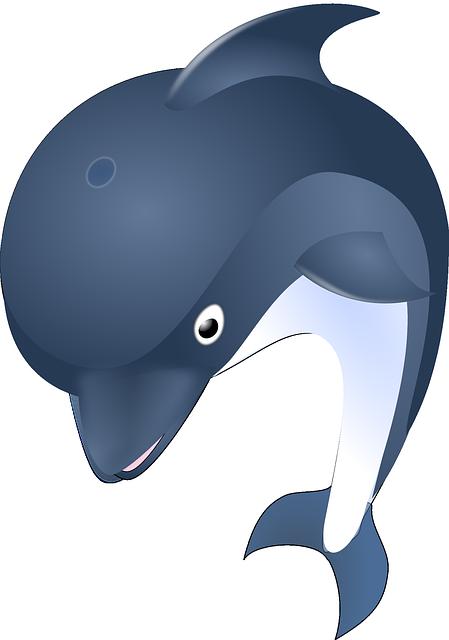 Dolphin, Ocean, Animal, Mammal, Sea, Water, Fish