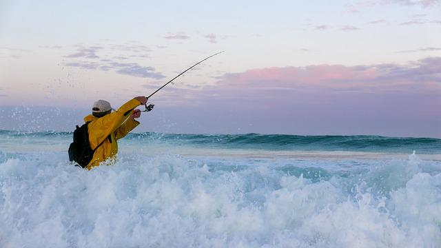 Brittany, Fishing, Ocean, Water, Horizon, Angler
