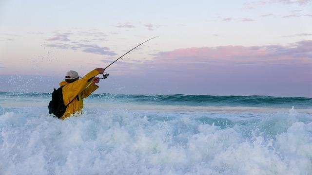 Brittany, Fishing, Ocean, Water, Horizon, Angler