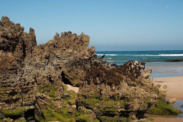 Ocean, Beach, Tide, Rocks, Erosion, Algae