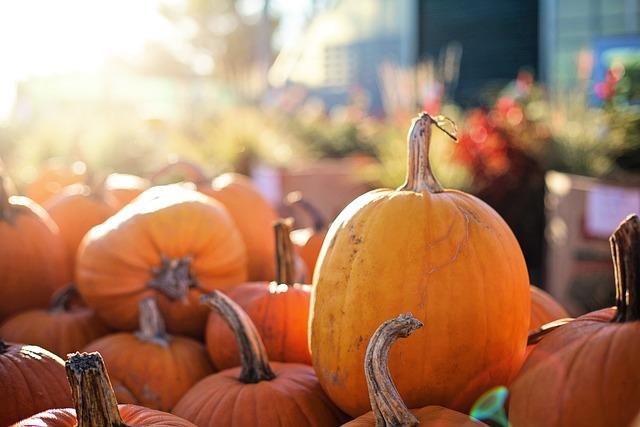 Pumpkins, Halloween, Fall, Autumn, October, Orange
