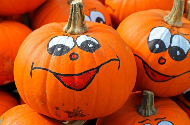 Pumpkins, Hokkaido, Autumn, October, Harvest