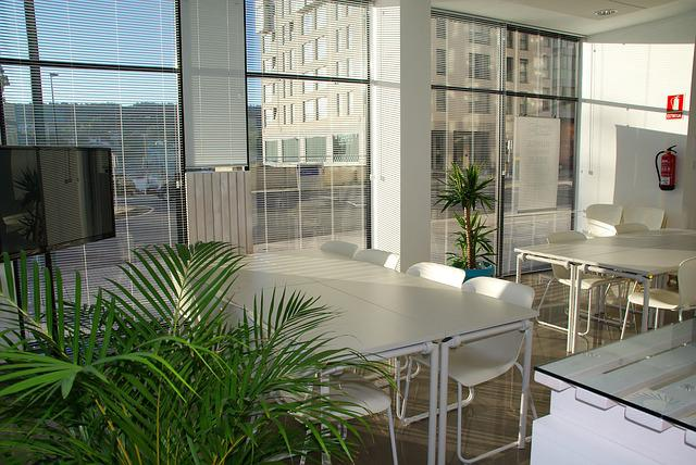 Office Space, Office, Sunny, Coworking, Meeting
