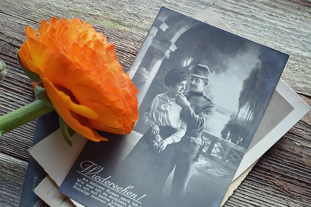 Postcard, Old, Antique, Past, Memories, Flower