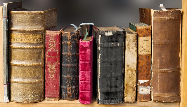 Book, Read, Old, Literature, Pages, Books, Bookshelf