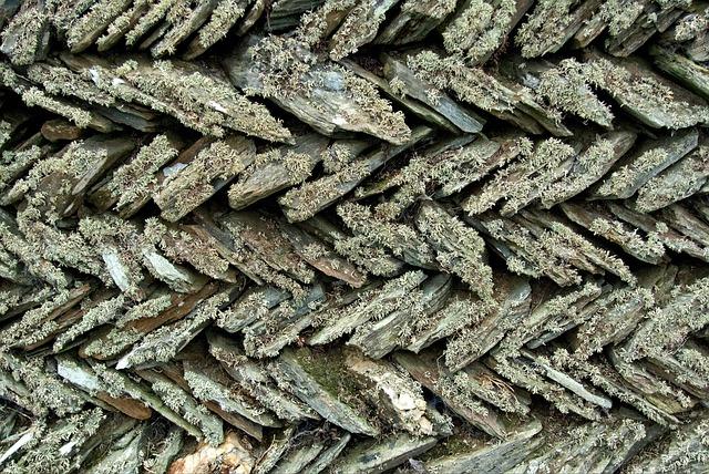 Stone, Wall, Slate, Lichen, Old, Herringbone, Diagonal