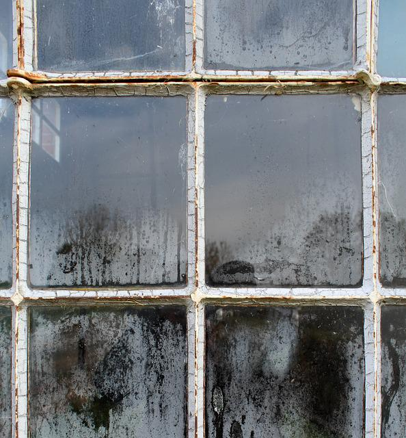 Window, Old, Glass, Structure, Dirty, Dusty, House