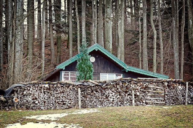 Hut, Forest, Vacation, Nature, Log Cabin, Wood, Old