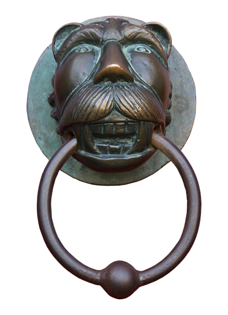Doorknocker, Brass, Close, Old, Input, Metal, Door