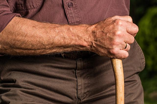 Hand, Walking Stick, Arm, Elderly, Old Person, Cane