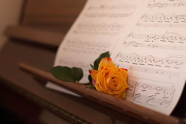 Paper, Music, Clef, Old, Rose, Piano, Tones