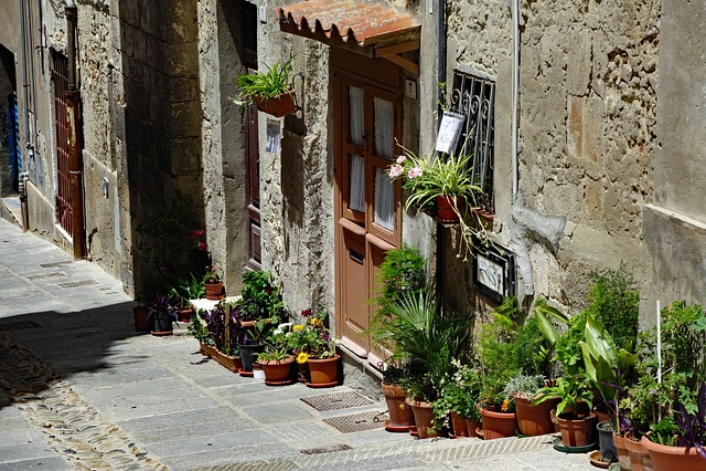 Sardinia, Cagliari, Old Town, Italy, Facade, Plant