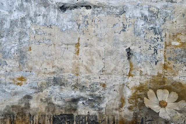 Spot, Stain, Old Wall, Wallpaper, Background, Wall